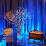 Chicago-Holiday-Decor-Corporate-Event-Art-Of-Imagination_0740
